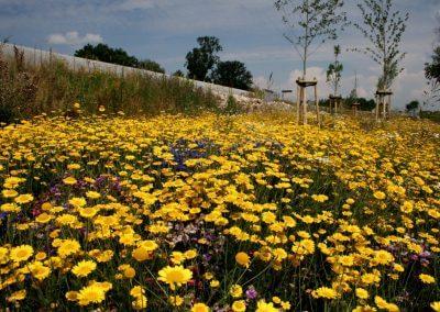 Jardins Gottri Remy CD-67-RD-422-MOLSHEIM-400x284 Créations végétales pro
