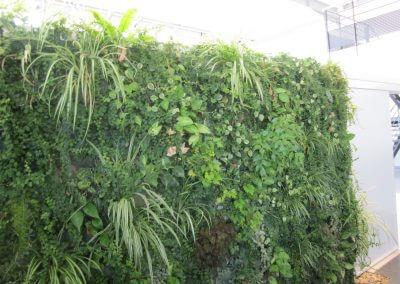 Jardins Gottri Remy GARAGE-GRASSER-MUR-VEGETAL-1-400x284 Créations végétales particulier
